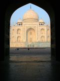The Taj Mahal Photographic Print by David Bracher