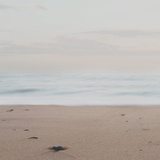 Like the Calm before the Storm ... Photographie par Laura Evans