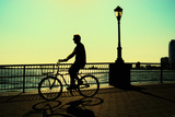 Man on a Bicycle, Battery Park, New York City Photographic Print by Sabine Jacobs