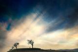 Sunrise Photographic Print by Svante Oldenburg