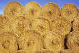 Straw Stacked Photographic Print by Den Reader