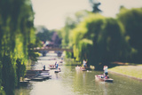 Punting on the River Cam Photographic Print by Laura Evans