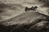 Colmers Hill Photographic Print by Tim Kahane
