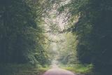 Wanderlust (Part Iii) Fotografie-Druck von Laura Evans