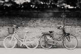 His N Hers ... Photographic Print by Laura Evans