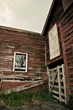 Rustic Red Barn Walls Photographic Print by Susannah Tucker
