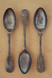 Three Antique Tarnished Silver Teaspoons Photographic Print by Den Reader