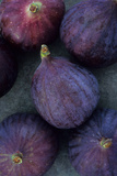 Purple Figs Photographic Print by Den Reader