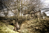 Overgrown Home Photographic Print by David Bracher