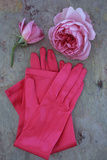 Red Gloves and Rose Photographic Print by Den Reader