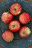 Manzanas Gala Lámina fotográfica por Den Reader