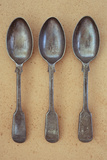 Three Silver Teaspoons Photographic Print by Den Reader
