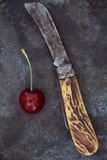 Dark Red Cherry Photographic Print by Den Reader