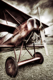 Fokker Dr1 Triplane Photographic Print by David Bracher