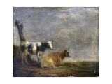 Two Cows, after Paulus Potter, 1652 Posters by Paulus Potter