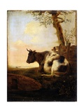 Crouching Cow, after Jan Kobell II Posters