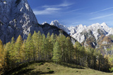 Julian Alps, Slovenia Photographic Print by David Baker