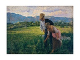 Blowfly (Peasant Girl in the Fields with Young Suitor) Posters by Noe Bordignon