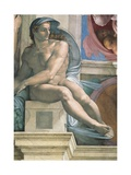 Sistine Chapel Ceiling, Male Nude Art by  Michelangelo Buonarroti