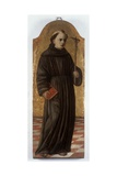 Saint Francis, Standing with a Crucifix Prints by Antonio (Guidaccio) Cecchi
