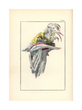 Hat in White Taffeta Trimmed with Pink Ribbon Giclee Print