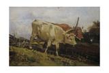 Plowing with Two Oxen Affiches par Demetrio Cosola