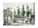 Pantheon Street Food Vendors in Rome Print by Antoine Jean-Baptiste Thomas
