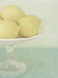 Lemon Stand Giclee Print by Shana Rae