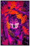 Opticz Autumn Wolf Blacklight Reactive Poster Photo