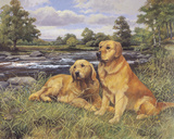 River Rest Giclee Print by Richard Britton