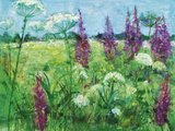 Summer Meadow Giclee Print by Ann Oram