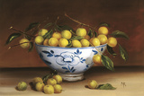 Bowl of Greengages Giclee Print by Mimi Roberts