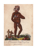 Domesticated Orang Utan (Female) Wearing a Striped BandanaPongo Pygmaeus Giclee Print