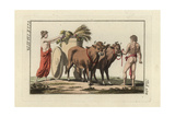 Roman Two-Wheeled Farm Cart Plaustrum Drawn by Oxen Giclee Print