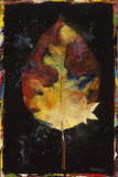 Botany Pride III Giclee Print by  Georgie