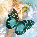 Emerald Butterfly II Giclee Print by Ingrid Van Den Brand