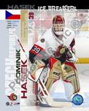 Ottawa Senators Dominik Hasek - Ice Breakers Composite Photo