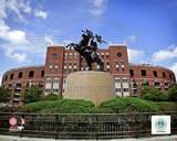 NCAA Doak Campbell Stadium Florida State University Seminoles 2012 Photo