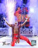 World Wrestling Entertainment Shawn Michaels Action Photo