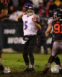 Joe Flacco 2013 Action Photo