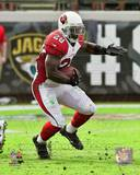 Rashard Mendenhall 2013 Action Photo