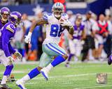 Dez Bryant 2013 Action Photo