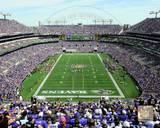 M&T Bank Stadium 2013 Photo