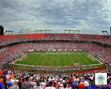Sun Life Stadium University of Miami Hurricanes 2013 Photo