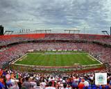 Sun Life Stadium University of Miami Hurricanes 2013 Photo