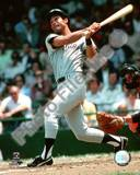 Roy White 1976 Batting Action Photo