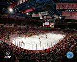 NHL Joe Louis Arena 2013 Photo