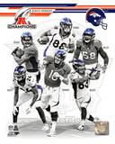 Denver Broncos 2013 AFC Champions Team Composite Photo