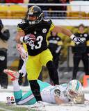 Troy Polamalu 2013 Action Photo
