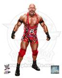 Ryback 2013 Posed Photo